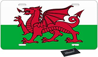 metal welsh dragon