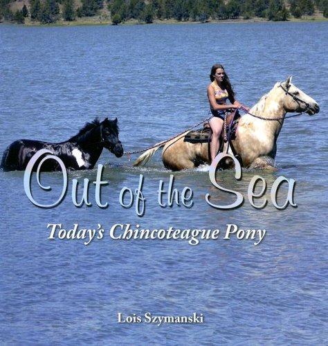 Szymanski, L: Out of the Sea, Today's Chincoteague Pony