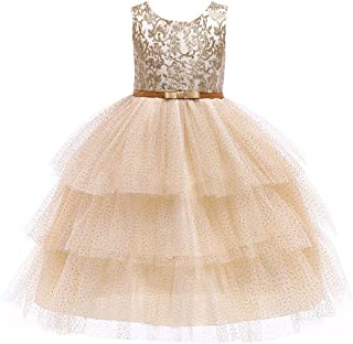 2f30b41395289 Robe Fille à Volants Belle Fantaisie Junior Fleur Fille Robe sans Manches  Floral Rose Tulle Princesse