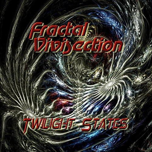 Fractal Vivisection