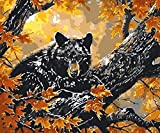 BHDSV DIY Canvas Painting for AdultsLinen Canvas Digital Principiantes H Set Cute Cat Theme -with Frame-40x50cm