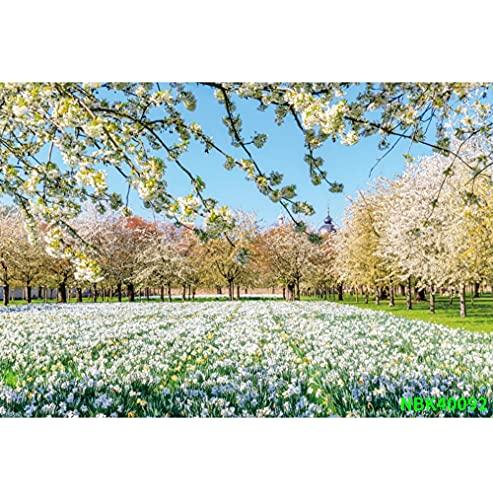 Fondos de fotografía escénica de árboles de Pradera de jardín de Primavera Natural Fondos fotográficos Personalizados para Estudio fotográfico A27 3x3m