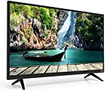 VIZIO D48N-E0 LED 1080p 60 Hz Smart TV, 48