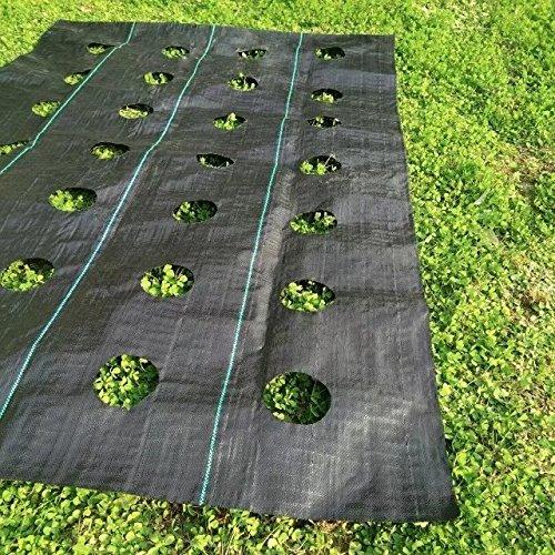 BOI Cubierta para Piso de Paisaje, Resistente, para Control de Malas Hierbas de jardín, Cubierta para el Suelo, Membrana de Tela para Paisaje, Control de la erosión y estabilizado a los Rayos UV