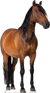 Advanced Graphics Horse Life Size Cardboard Cutout Standup