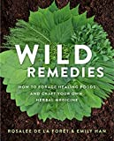 Wild Remedies: How to Forage Healing Foods and Craft Your Own Herbal Medicine homeopathy books Apr, 2021