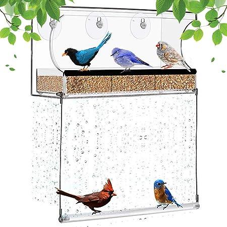 modest hummingbird bird feeders