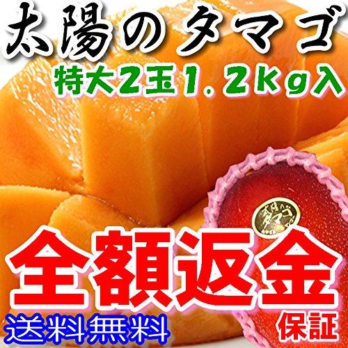 太陽のタマゴ 秀品(贈答向け) 特大2個 約1.2kg 化粧箱入 糖度15度以上 マンゴー