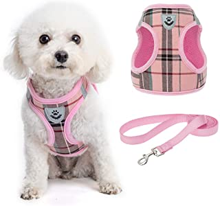Soft Mesh Plaid Puppy Harness - Small Dog Harness and Leash Set, Adjustable & Comfortable Padded Reflective Vest for Puppi...