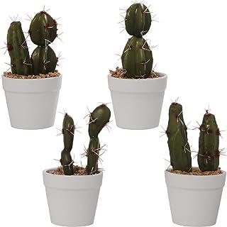 Amazon.es: cactus artificiales