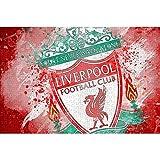 HYLLVC 1000 Piezas de Rompecabezas para Adultos Liverpool: Champions Logo Puzzle de 1000 Piezas para Adultos y niños Juego Familiar cooperativo desafiante y Divertido 38x26cm