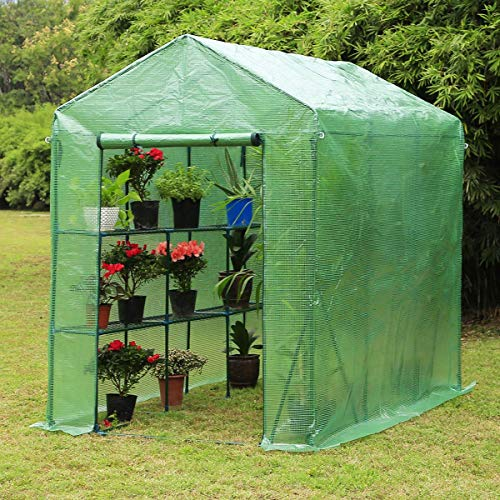 Erommy 84' W X 56' D X 77' H Mini Walk-in Greenhouse,Indoor Outdoor Plant Gardening, 2 Tier 6 Shelves Hot House For Flowers, Plants And Vegetables,Green