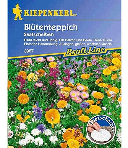 Duft-Blütenteppich', 5 Saatscheiben