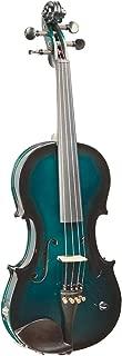 Barcus Berry, 4-String Violin (BAR-AEG)