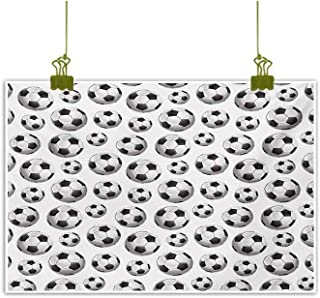 Living Room Decorative Painting Pattern with Vivid Graphic Soccer Balls Sports Icon Athletics Hobbies Charcoal Grey White Decorative Painted Sofa Background Wall 28