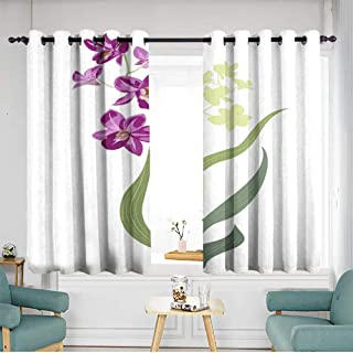 Curtains for bedroom green stems and leaves on white background digital draw tropical plants vector botanical illustration for design W 72