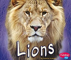 Lions (African Animals)