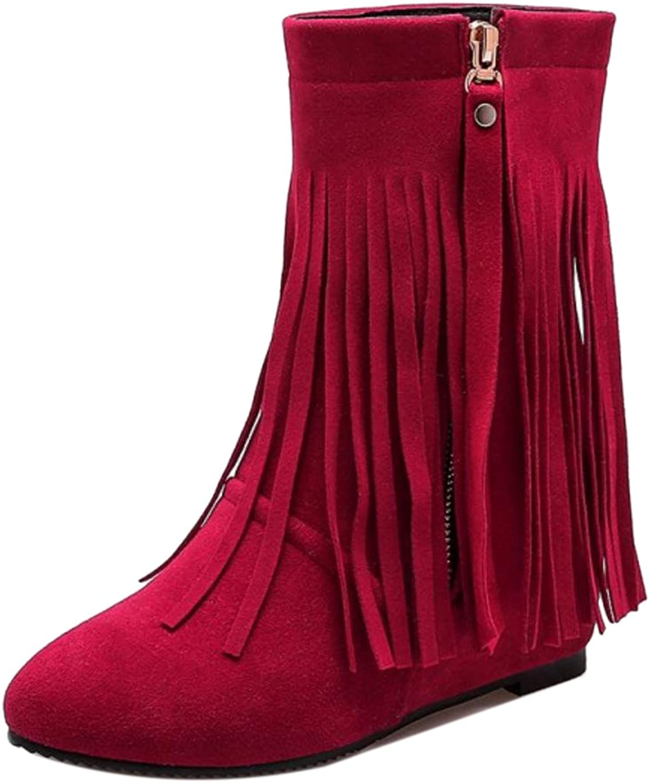 FizaiZifai Women Classic Zipper Boots Hidden Heel