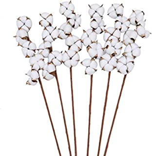 The Wreath King Cotton Stems 6 Pack with 5 Cotton Bolls Per Stem 26 Inch Cotton Branches Farmhouse Decor Fall Decorations ...