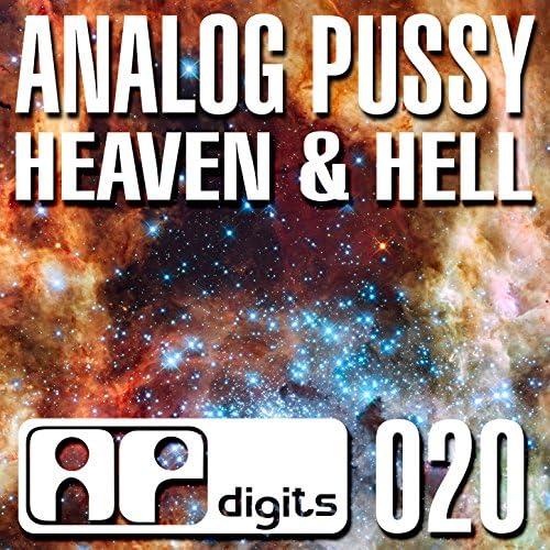 Analog Pussy