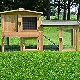 Zooprimus Kaninchenstall 01 PL Hasenkäfig - Meister Lampe - Stall für Außenbereich (für Kleintiere: Hasen, Kaninchen, Meerschweinchen usw.)