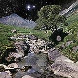 The Beta Band - Edición Deluxe [Vinilo]
