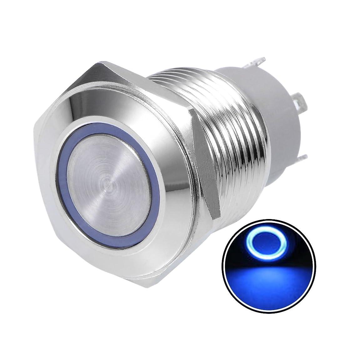 労働者誘うインフラuxcell 押しボタンスイッチ ブルー 16mm取付径 250V 5A 3Vライト電圧 六角フラットヘッド 1個入り