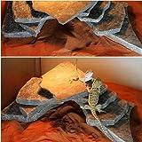 形状お任せ 爬虫類用バスキングスポット ~ウォーム・プレート~ Mサイズ 3個 爬虫類 レイアウト用品