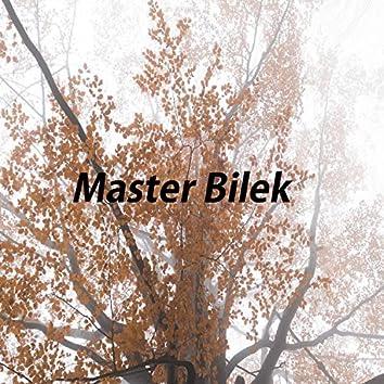 Master Bilek