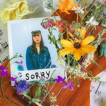 the sorry song