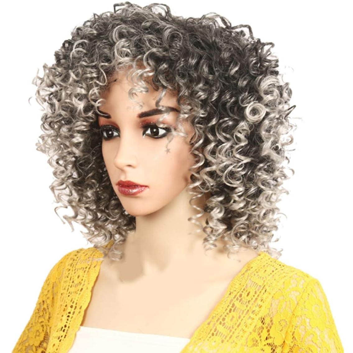 そよ風階層細分化するアフリカの黒人女性のかつら短い巻き毛のかつらふわふわ自然は低温二次形状で矯正することができます,Gray