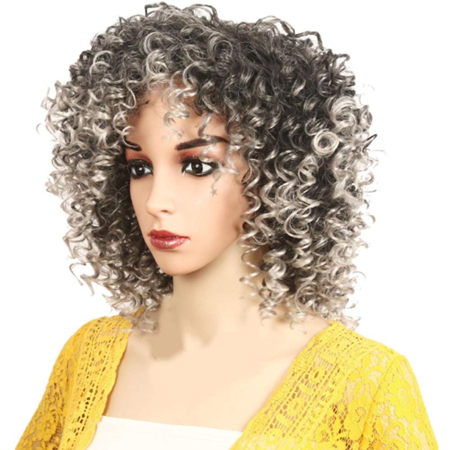 年届ける流星アフリカの黒人女性のかつら短い巻き毛のかつらふわふわ自然は低温二次形状で矯正することができます,Gray