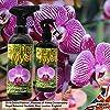 Growth technology 5025644914709 Orchid Myst Spray 750Ml Concimi Liquidi Orto E Giardino, Unica #4