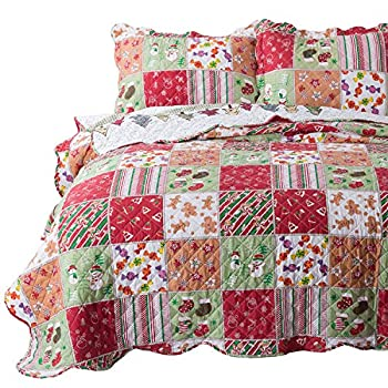 Bedsure Christmas Quilt Set Full/Queen Size  90x96 inches  - Multicolor Printed Pattern - Soft Microfiber Lightweight Coverlet Bedspread for All Season - 3-Piece Bedding  1 Quilt + 2 Pillow Shams