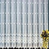 heimtexland Gardine Vorhang edler Plauener Stickerei Store in Florentiner Optik rein weiß gebogt HxB 120x300 cm- geprüfte hochwertige Qualität …auspacken, aufhängen, fertig! Typ49
