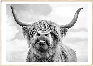 Artliving Cute Highland Cow Sticking Tongue Out Art Print Poster for Home Decor Wall Decor Unframed (40X50 cm)