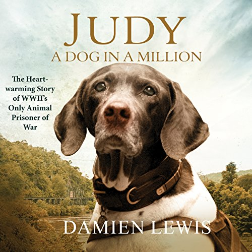 Judy: A Dog in a Million audiobook cover art