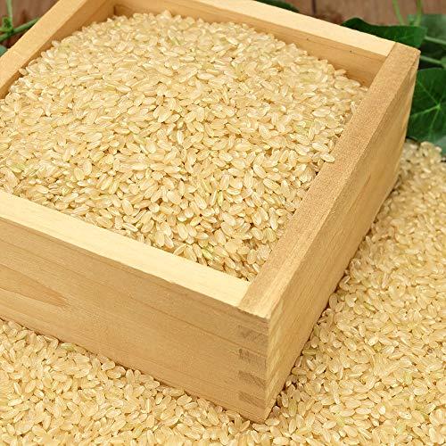 【令和2年度産】田口さんちのはさがけ天日干し米(つがる) 玄米 5kg 無農薬 (青森県 だんごっこファーム) 産地直送 ふるさと21