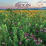 Illinois Wild & Scenic 2022 12 x 12 Inch Monthly Square Wall Calendar, USA United States of America Midwest State Nature