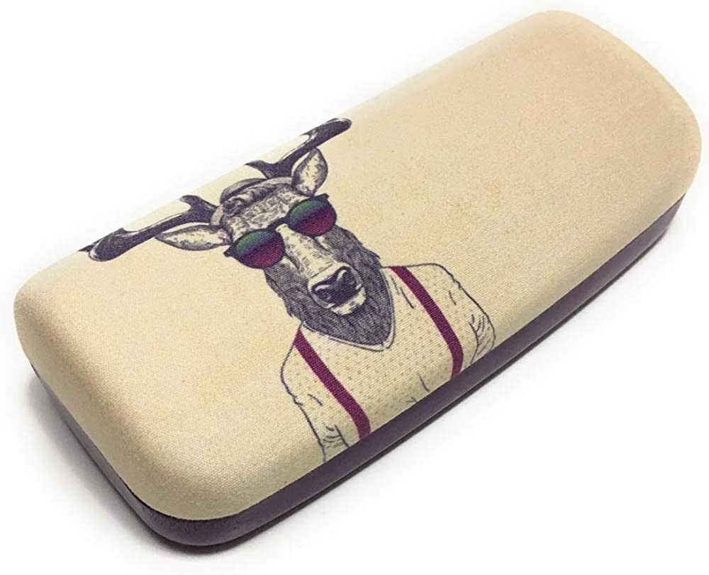 BaileyBee Hard Shell Eyeglass Case for Reading Glasses Spectacles and Small Sunglasses