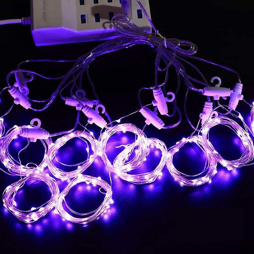 枯れる慣性精神イルミネーションライトカーテンライト 電飾USBライトクリスマス 窓 ベランダ 飾結婚式 誕生日飾りライト スター電飾insスタイルusb式5色 (パープル, 3 * 3M(300灯あります))