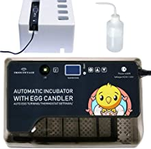 Best small incubator for chicken eggs Reviews