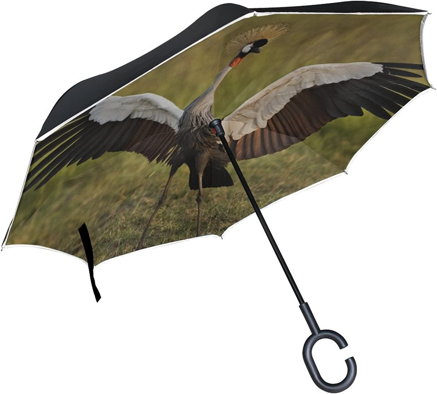Grass Cranes Birds Umbrella Ingreened Studio Rh Feathers