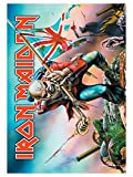 Iron Maiden Poster Fahne Trooper