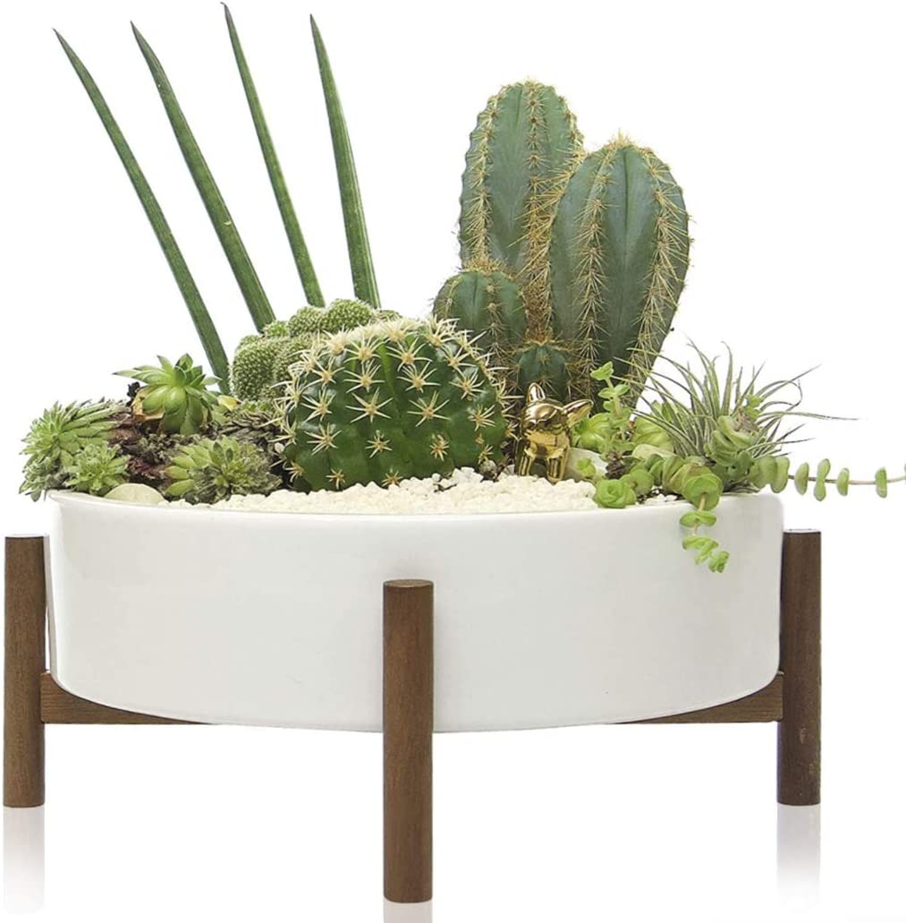 Kimisty 10 Inch Mid Century Large Round Succulent Planter Bowl with Drainage, White Ceramic Pot with Wood Stand, Succulent Garden Shallow Pot, Tabletop Centerpiece, Includes Decorative White Pebbles