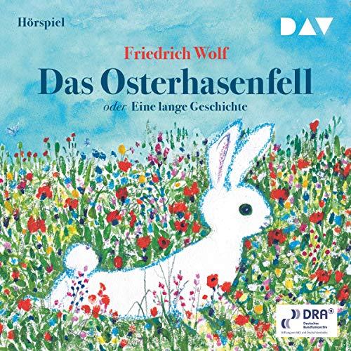 Das Osterhasenfelloder Eine lange Geschichte audiobook cover art