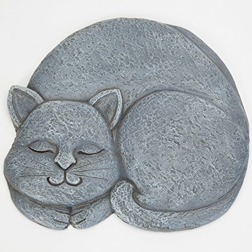 CAT Stepping Stone- gauche