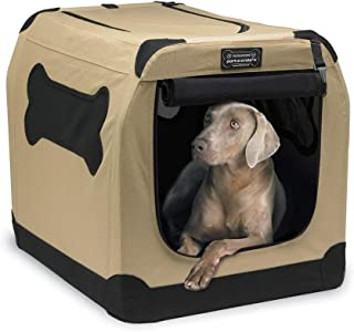 interior dog house