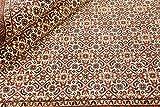 Nain Trading Indo Bidjar Royal 240x172 Orientteppich Teppich Rost/Lila Handgeknüpft Indien - 3