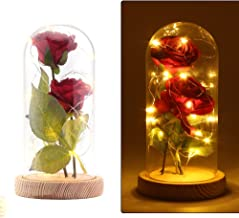DDSKY Beauty and The Beast Silk Rose and Led Light with Fallen Petals in a Glass Dome on a Wooden Base Artificial Flowers Full Kit Creative DIY Gift for Christmas Valentine's Day (Red)